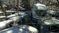 VW's in yard