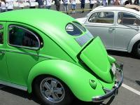 Bug In 34