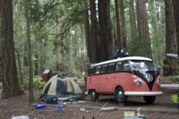camping at Butano State Park, Ca
