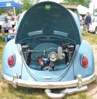 Clean Blue Bug