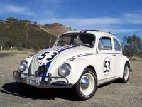 Herbie the Love Bug. Correct detail information.