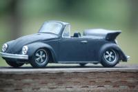 Beetle Model