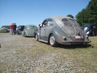 european bug-in 3