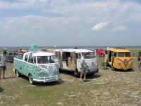 Bugs and Buses By Barnegat Bay
