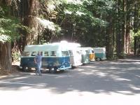 Buses @ Humboldt Redwoods State Park
