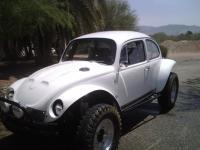 Chirco's Project Baja Bug
