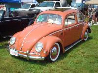 Terryville Connecticut Bug-A-Fair 2009