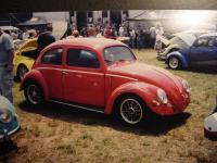 Oval old skool bug