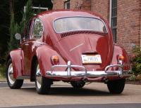 Freds Red Bug
