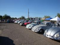 Beetle line-up