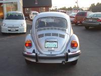 1977 Diamond Silver Beetle