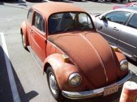 Rusted Bug