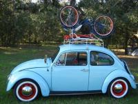 Bug and Schwinn...Ready for Bug Jam