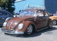 THE BROWN BUG
