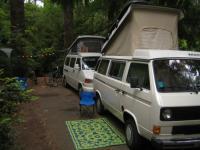 Vans at Dunes