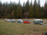 old volks nor-cal vw club