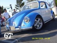 Bocho67' (Blue)