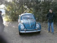 My 66 rescued from the kudzu
