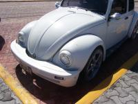 Mexican Custom Bug