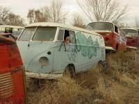 Colorado Bus Hunting