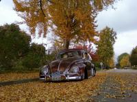 59 shiney rust