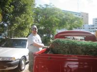 cabster with a wreath