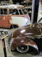 Shiney Rust Bug