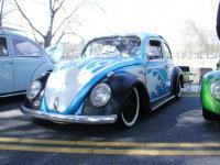 Mexi Bug