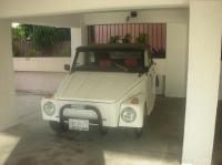 safari 78