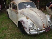 Lakeland VW Classic 2010