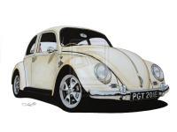 My Beetle Drawing