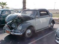 1955 Convertible Beetle