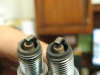 Singleport 1 and 2 plugs