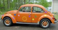 hippy bug