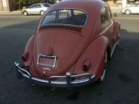 1958 Coral Red Beetle