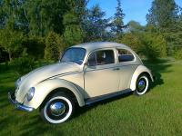 Restored VW Beetle from 1965