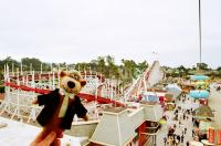 Yogi at the Santa Cruz Beach Boardwalk