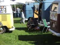 transporterfest 2010