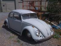 gray 65