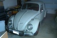 New 66 Beetle