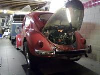My 1959 bug!