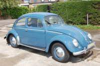 My european 58 bug