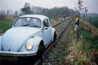 beetle riding rails