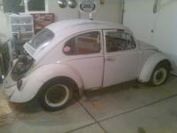 New Project:  65 Bug