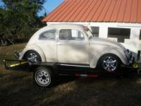 1954 oval bug from aguas buenas puerto rico