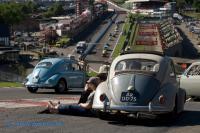 Le Bug Show 2010