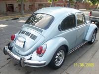72 Marathon Beetle