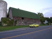 Ghia at the barn