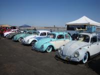 Bug line-up