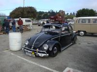 Black Beetle